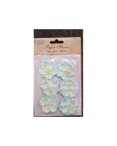 Paper Flowers - Anemone...