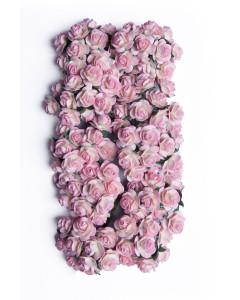 Bloom Flowers Miniature...