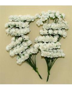 W&M Paper Roses Medium...