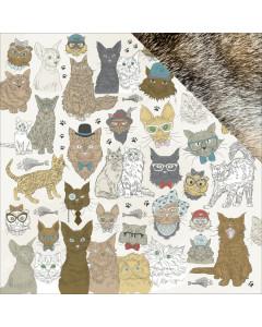 Kaisercraft Pawfect - Cats