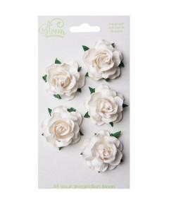 Bloom Flowers Wild Roses -...