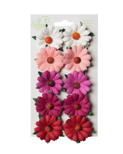 Bloom Flowers...