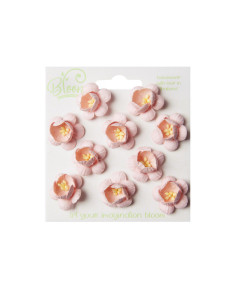 Bloom Flowers Cherry...