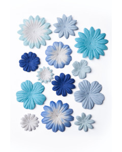 Bloom Flowers Blue and White